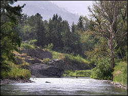 Crowsnest River with Turtle Mtn in background