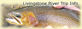 Click here for Livingstone River trip information