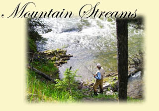Click here for Mountain Streams trip information