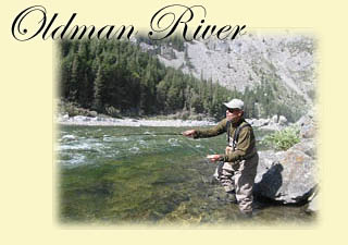 Click here for Oldman River trip information